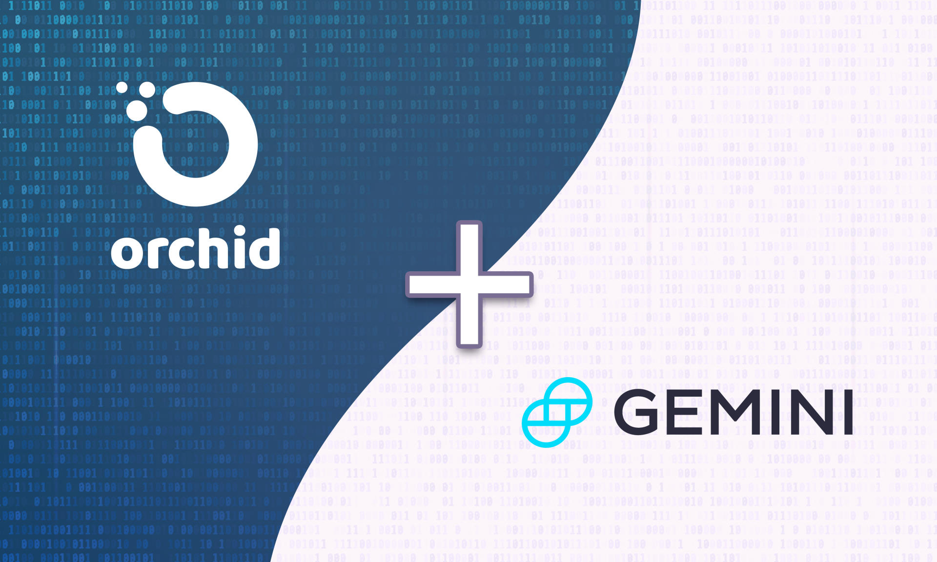 Orchid Continues Global Expansion With Gemini OXT Listing Coming Soon