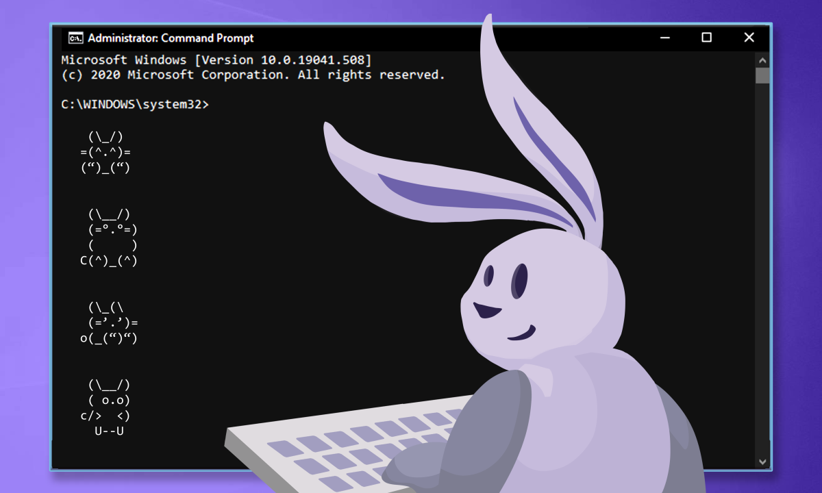Orchid is now available in beta for Windows command line